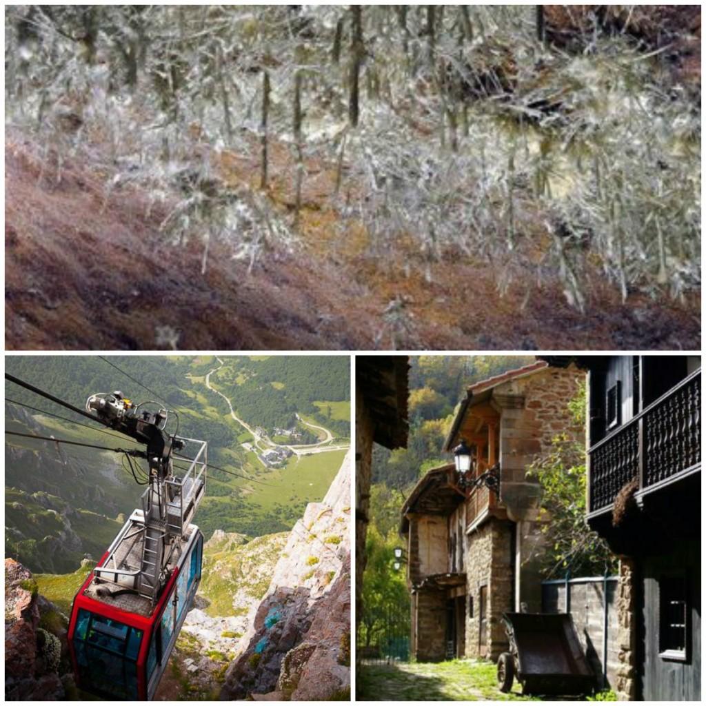 Cantabria-Turismo-Rural-Fito-Semana-Santa