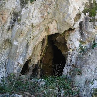 Cueva-Aurea